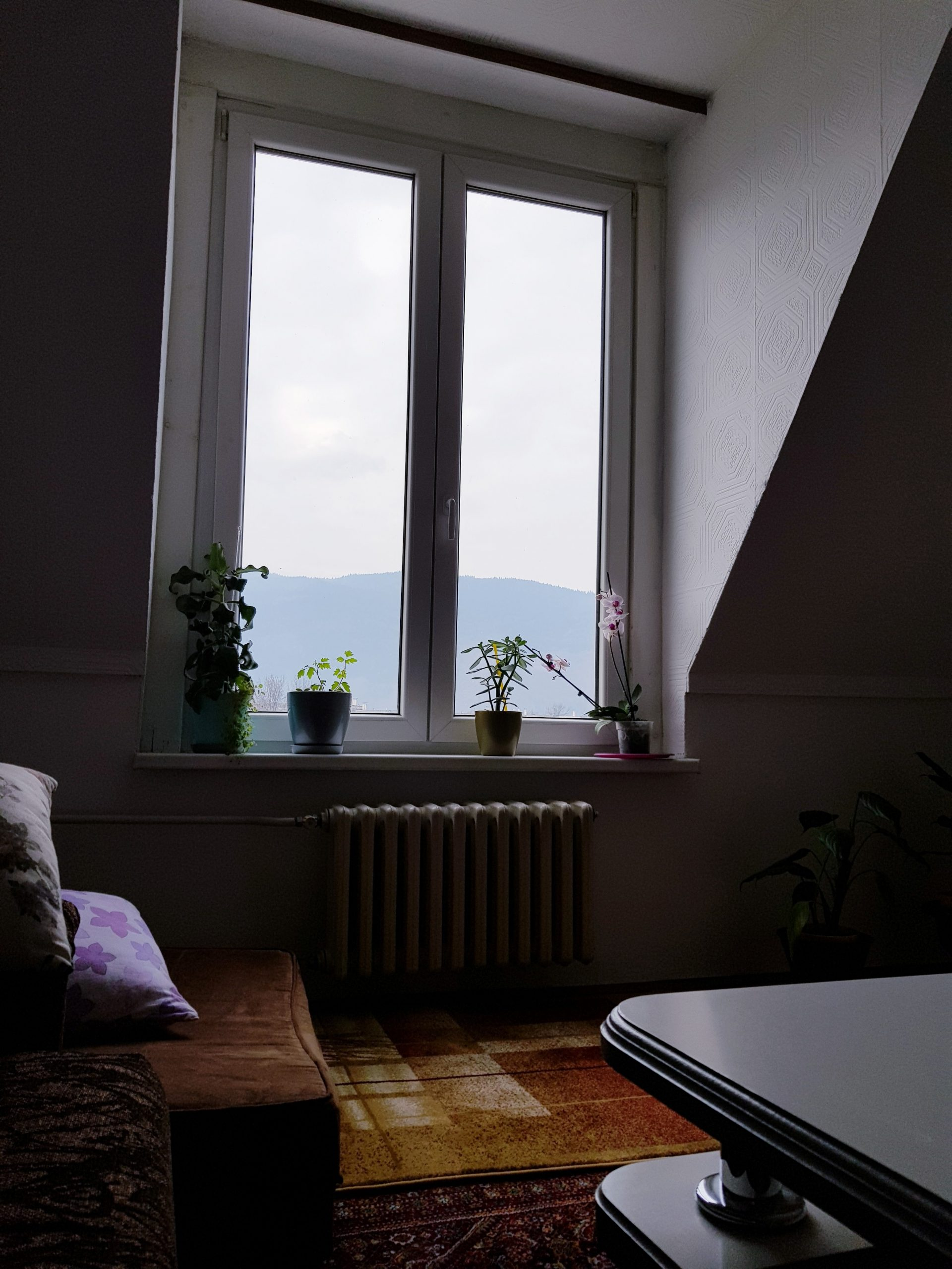 This is my window :) in living room